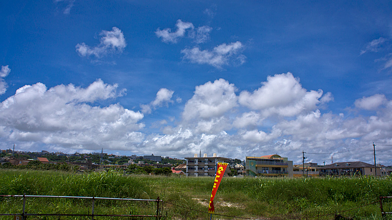 park_yotei_usagi.jpg