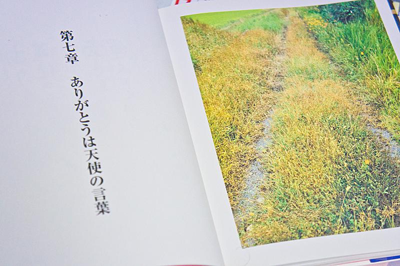 pinchi_no_uragawa01.jpg