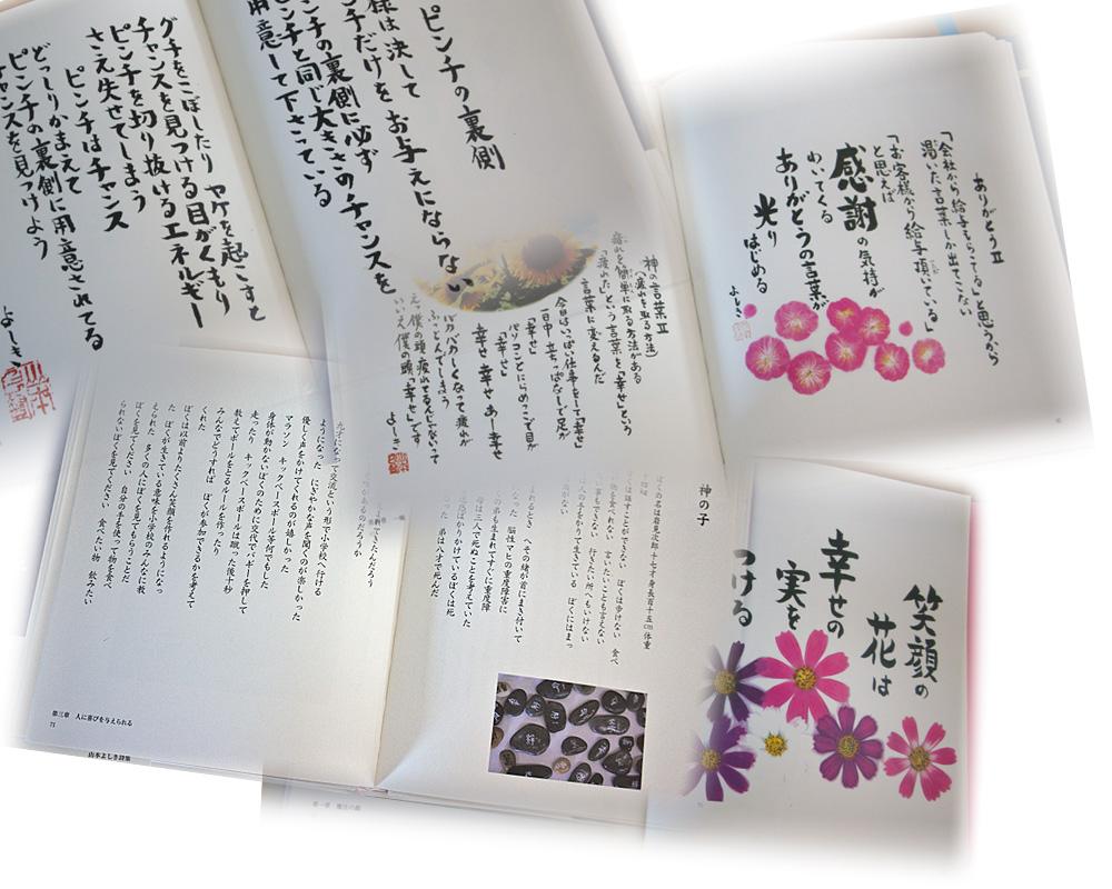 pinchi_no_uragawa_all.jpg